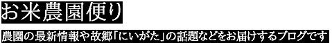 米農家が選ぶ「コシヒカリが美味しくなるご飯のお供」ベスト3!