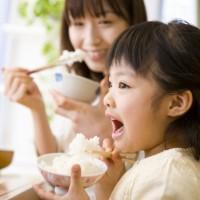 【毎回10%増量】まごころ米 こしいぶき(白米)10kg 定期12回コース