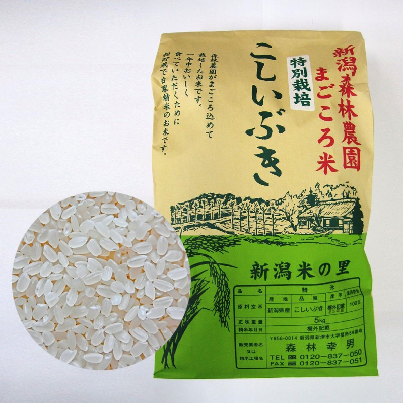 【毎回10%増量】特別栽培米こしいぶき(白米)5kg 定期12回コース
