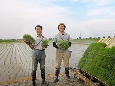 生育環境からこだわって育てた特別栽培米最高級こがねもち。