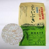 特別栽培米こしいぶき(白米)20kg