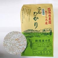 【毎回10%増量】特別栽培米コシヒカリ(白米)10kg 定期6回コース