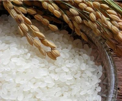 保存方法にもこだわり。お米はご注文に応じて自家精米して出荷します。