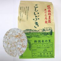 まごころ米 こしいぶき(白米)10kg