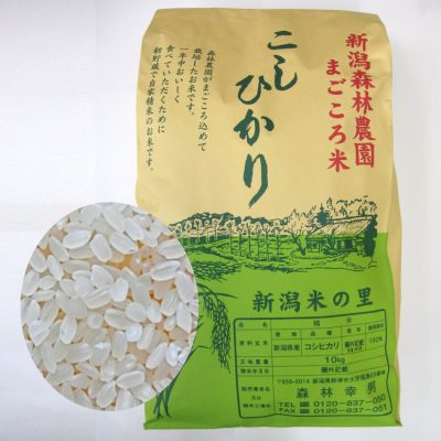 まごごろ米コシヒカリ(白米)10kg